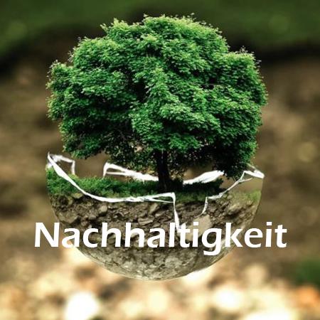Lösungen-Button Nachhaltigkeit