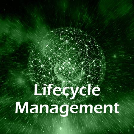 Lösungen-Button Lifecycle Management